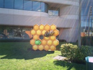 Honeycomb at Google's Building 44