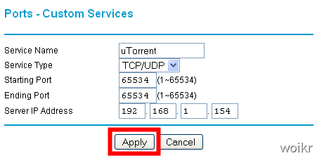 How to get maximum download speed via torrents- woikr
